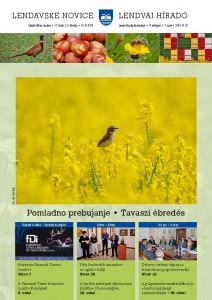 lendavske_novice_2014-01-02